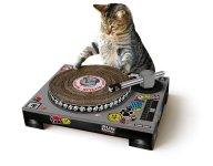 Suck UK Cat Scratch-$39.95